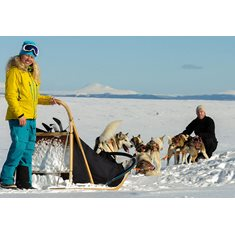 Dogsledding weekend in Fulufjället National Park